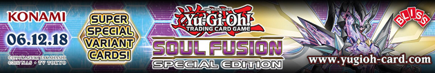 Soul Fusion Special top